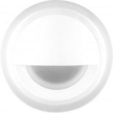 Светодиодный светильник Feron LN009 встраиваемый 3W 4000K, белый