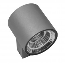 Уличный настенный светильник Lightstar 361694 Paro 16 Вт 1270Lm 4000K Серый