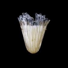 Светильник бра Lightstar Murano 601613