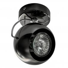 Потолочный светильник Lightstar 110588 Fabi Черный