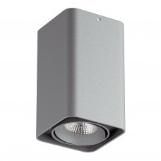 Потолочный светильник Lightstar 052139 Monocco 10 Вт 860Lm 4000K Серый