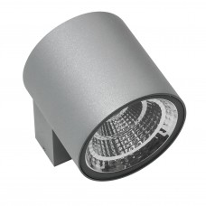 Уличный настенный светильник Lightstar 360692 Paro 10 Вт 800Lm 3000K Серый
