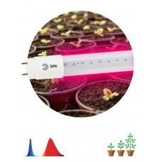 ЭРА Лампа красно-синего спектра FITO-9W-RB-Т8-G13-NL (25/1050)