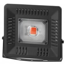 Светильник для растений ЭРА FITO-50W-LED BLUERED
