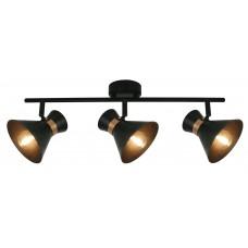 Спот Arte Lamp A1406PL-3BK Baltimore