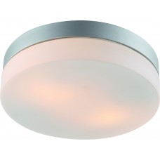 Потолочный светильник Arte Lamp A3211PL-2SI Shirp