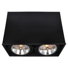 "Светильник ""кардан"" Arte Lamp A5936PL-2BK Cardani"