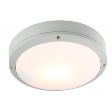 Светильник потолочный Arte Lamp A8154PF-2GY серый