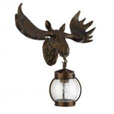 Уличный настенный светильник Favourite 1848-1W Hunt коричневый