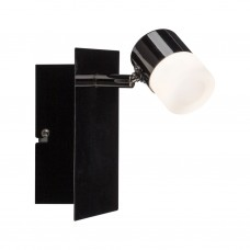 50098 Настенный светильник