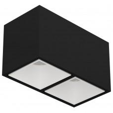 Потолочный светильник LeDron KUBING 2 Black/White LED 2*10 Вт 3000К Черный/Белый
