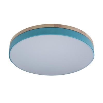 10001/36 Blue Светильник потолочный LOFTIT Axel