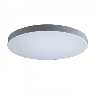 10002/48 White Светильник потолочный LOFTIT Axel