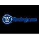 Westinghouse (США)