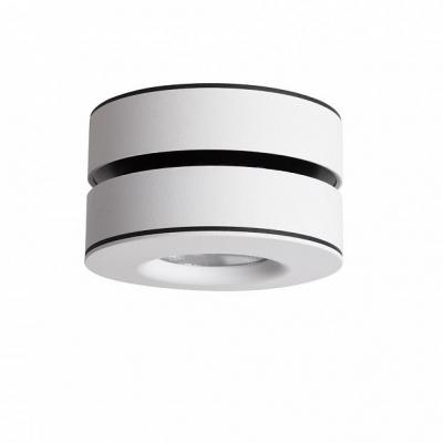 Потолочный светильникOmnilux OML-101909-12 Borgetto Белый 12 Вт