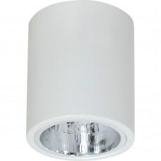 Потолочный светильник Luminex DOWNLIGHT ROUND 7236 белый