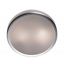 Потолочный светильник Оdeon light 2177-2C yun